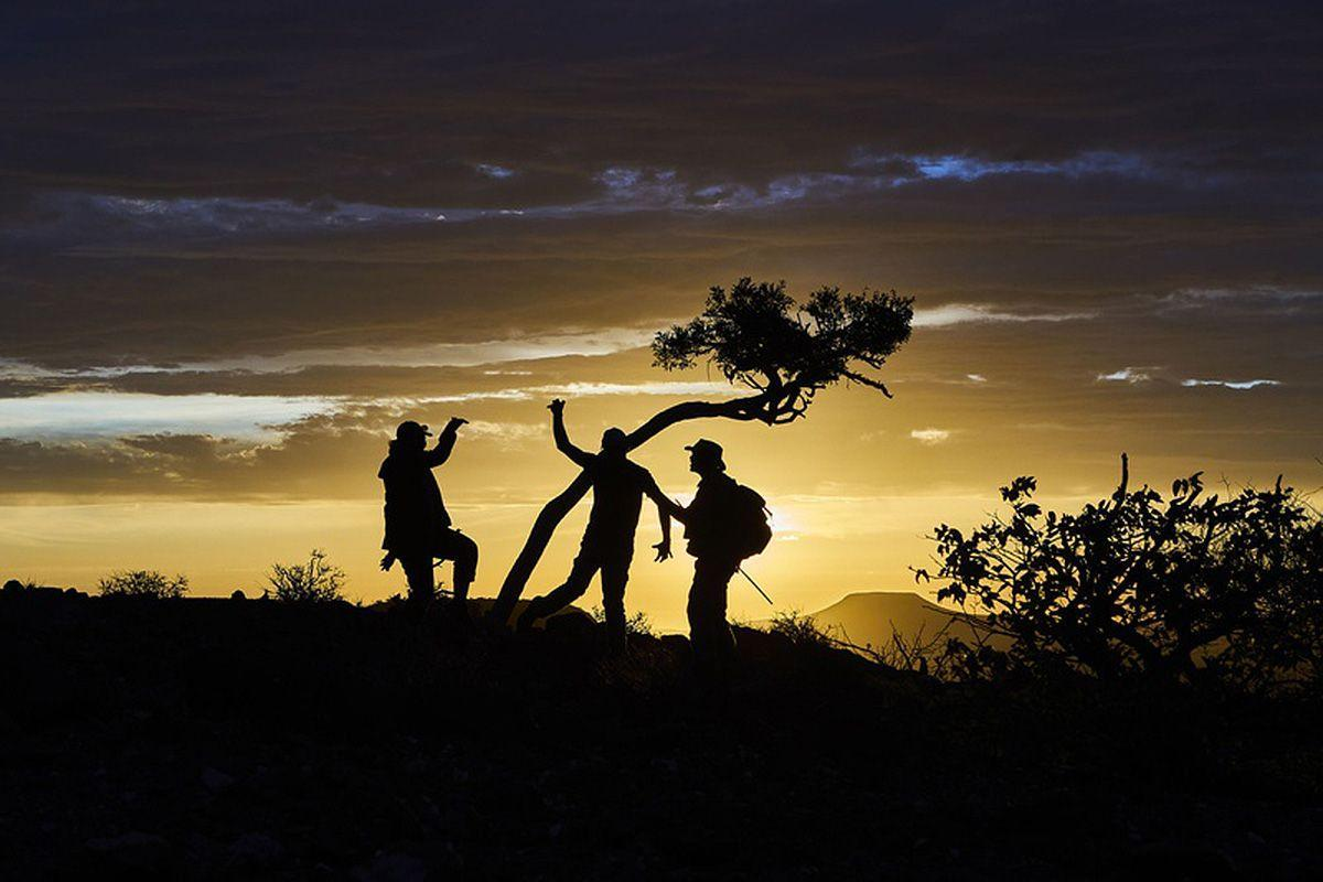 Sonnenuntergangs-Spaziergang