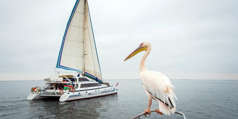 Catamaran-Charters-Intro