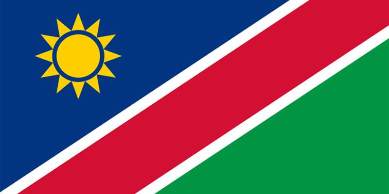 Flag of Namibia Intro