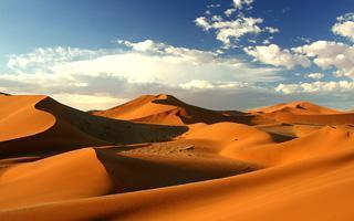 The great Namib Dune Sea
