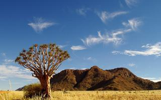 300 days of sunshine, blue sky and warm weather makes Namibia a unique travel destination
